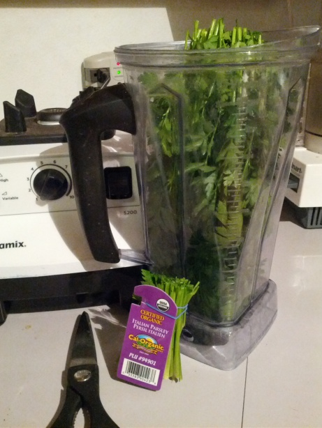 Green Smoothie 1b
