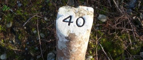 40-signpost-outside