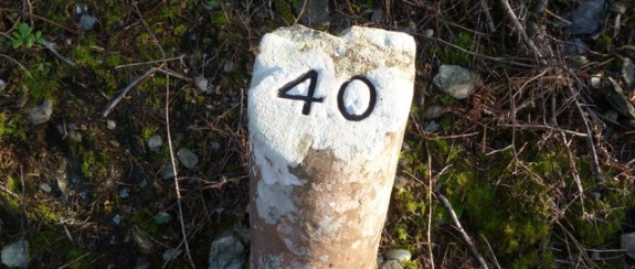 40-signpost-outside